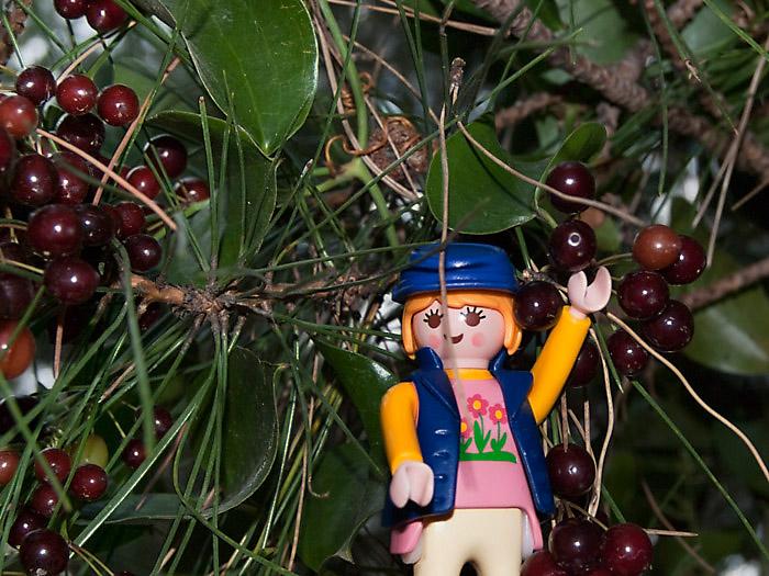 Playclicks, Playmobil , Lego, Beceite,Beseit,parrizal, Matarraña,vegetación